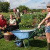 Page link: [NOTTINGHAM] St Anns Allotments Open Day