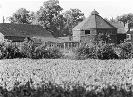Photo:Dovecote at Barton-in-Fabis, photographed in 1975