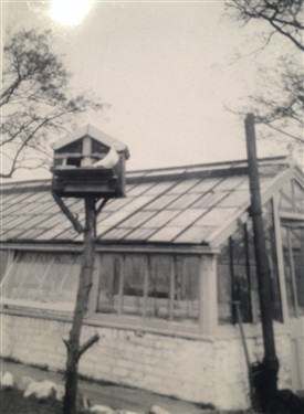 Photo:Bird table and greenhouse