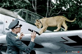 Photo:Franz von Werra with Simba